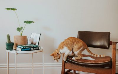 Lampy sufitowe do salonu – nowoczesne czy klasyczne? Sprawdzamy trendy!